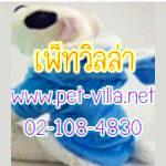 Pet Villa