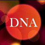 DNAshop จำหน่าายสินค้ากิ๊ฟช็อป และสินค้าพรีเมี่ยม
