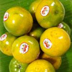 กรวิชญ์-ผักผลไม้สด จำหน่ายผักสด ผลไม้ต่างๆ นาๆ ชนิด